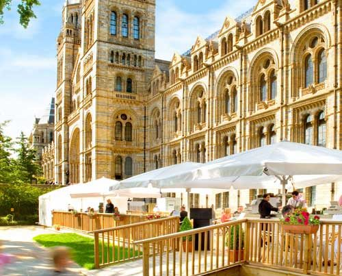 Natural History Museum - Deck Installation