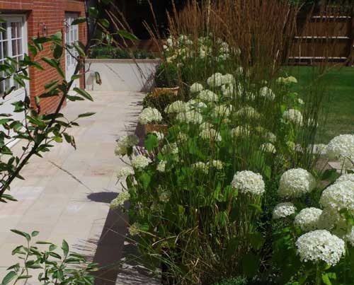 Large Family Garden Redesign in South West London