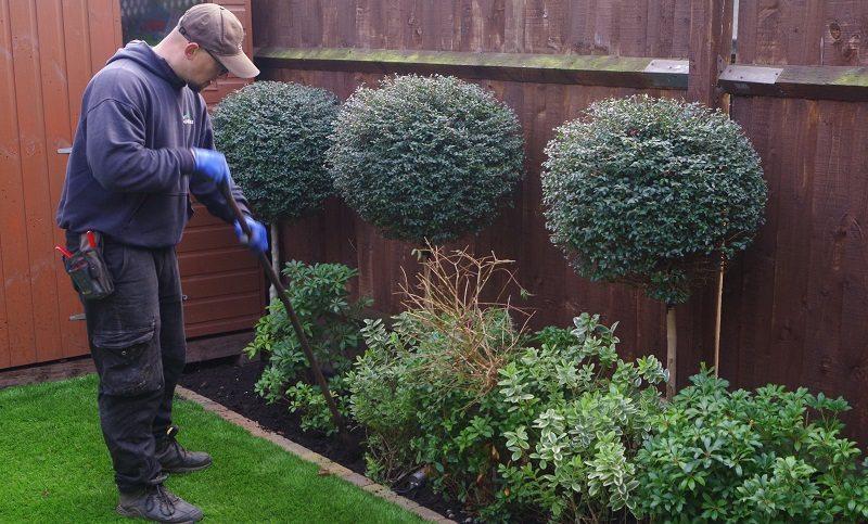 Garden maintenance gardener west london lawn care for Garden maintenance london